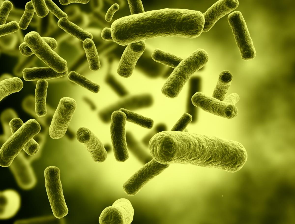 Xybix Antimicrobial Features