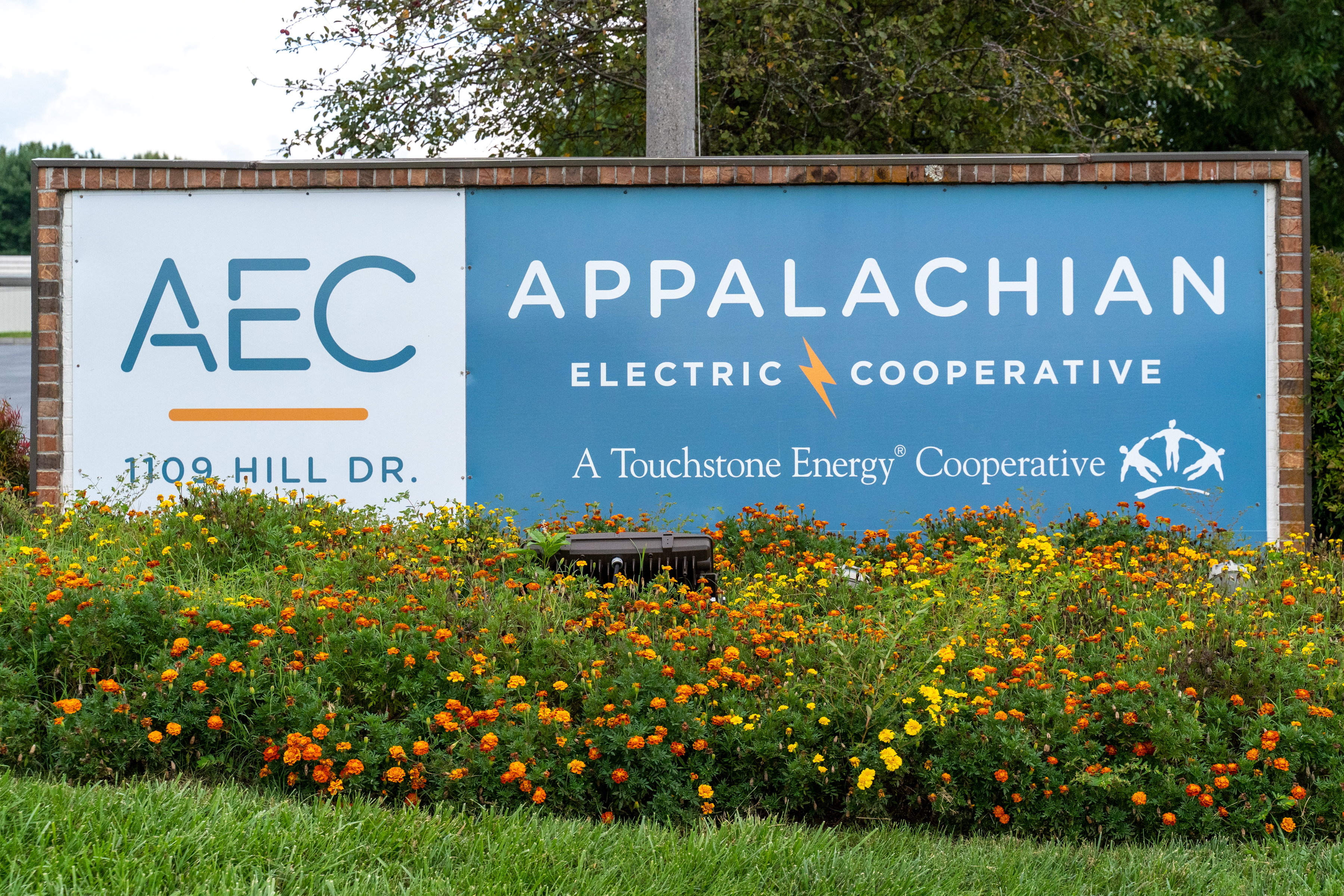 Appalachian Electric Sign