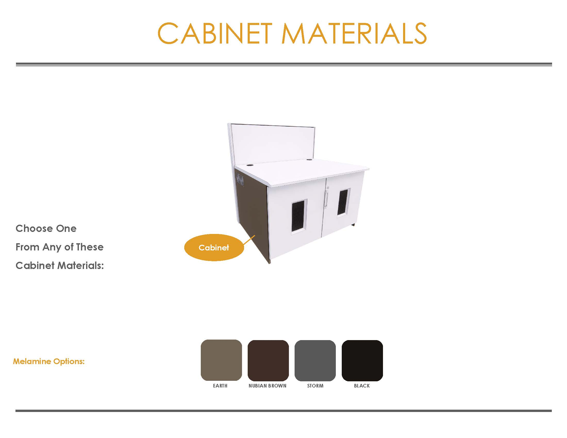 2021 Eagle Line Finish Brochure with Carpeting Cabinets